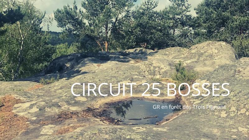 Circuit des 25 bosses