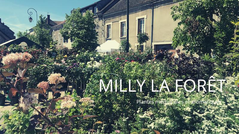 Milly la Forêt